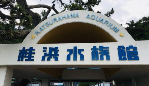 高知の「桂浜水族館」には隠れた魅力がいっぱい!